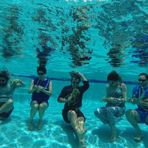underwaterbasket-500x500