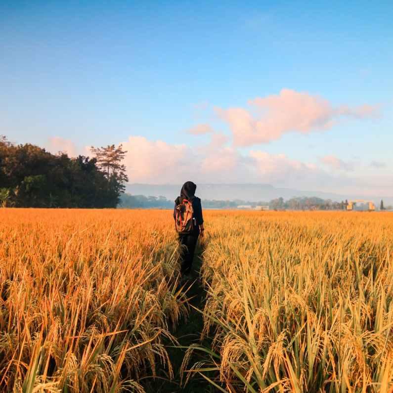 woman in black hijab headscarf walking on field